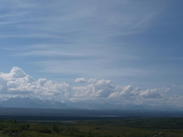 Denali Webcam